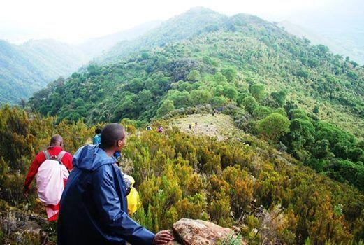 Mt Kipipiri High Altitude Hike - Mt Kenya