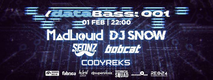 DataBass001  DJ Snow & MadLiquid