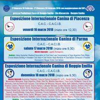 Internazionale di Parma