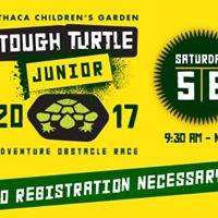 Tough Turtle Junior