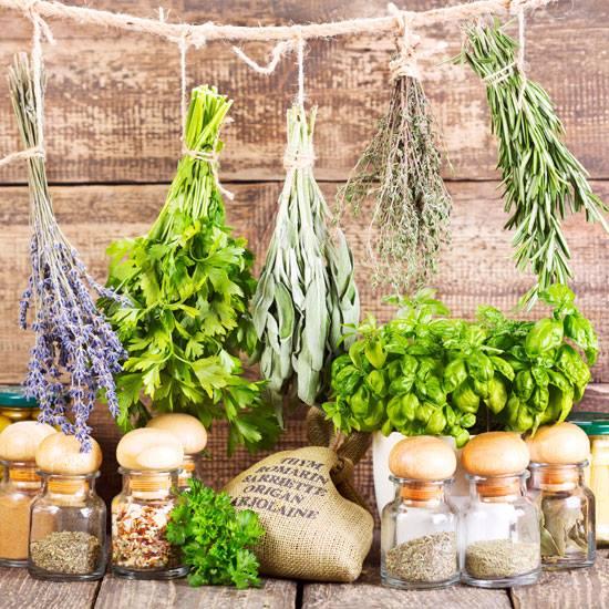 Delaware Natural Food Exchange