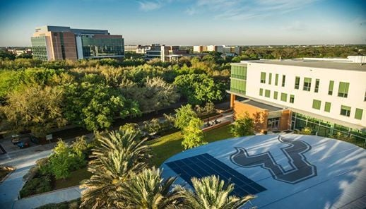University of South Florida - Study in TOP US University