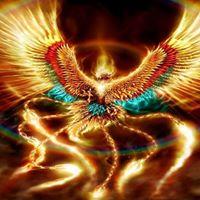 Become the Phoenix in New Delhi