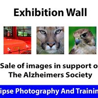 Meet and Ask - Exhibition Wall Andover