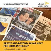 Brexit and Beyond. What next for Brits in the EU