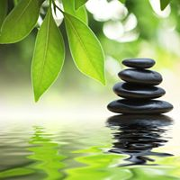 Drop in meditation