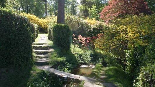 Create your Magickal Garden