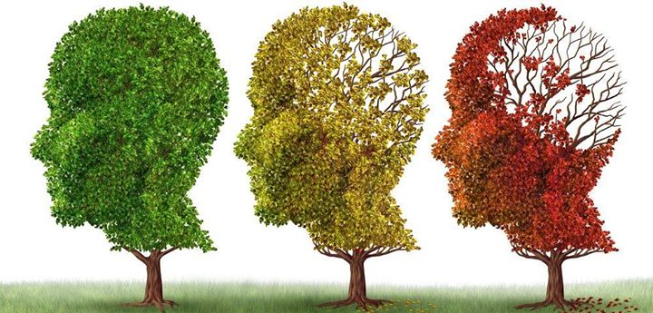 Alzheimers Research Update Early Detection Resources & Tools
