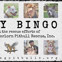 Bully Bingo for FTTF