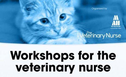 Vet Nurse Workshop Event