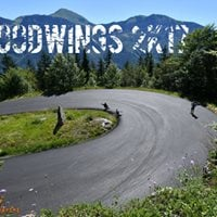 WoodWings 2017 your downhill experience