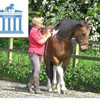 UK Marlborough Wiltshire Elaine Coxon Guided Study Series