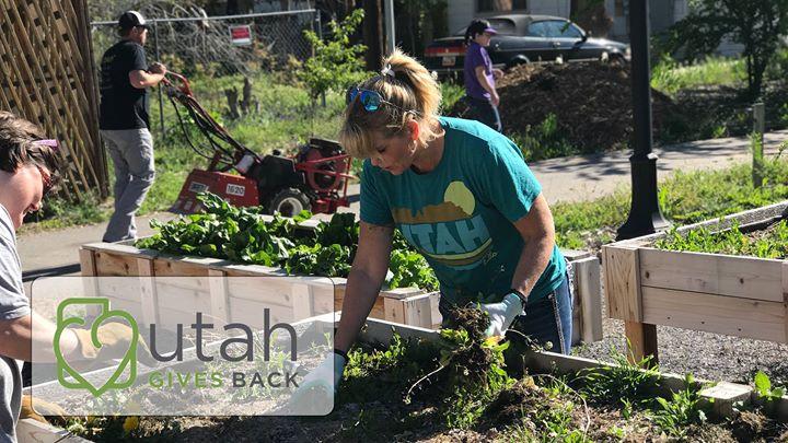 Utah Gives Back - Wasatch Community Gardens at Grateful Tomato ...