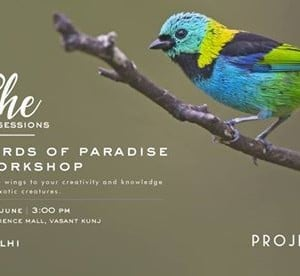 The She Sessions Birds of Paradise Workshop