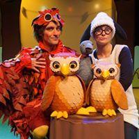 Hoot Owl Performance