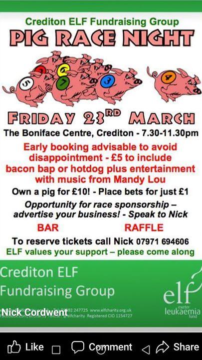 Crediton Elf Pig Racing