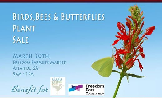 Birds Bees and Butterflies Plant Sale