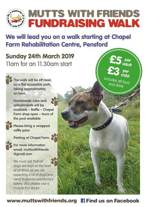 Mutts With Friends Fundraising Walk