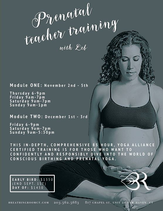 Prenatal Yoga Teacher Training Module 2