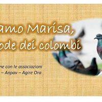 Aiutiamo Marisa la custode dei colombi