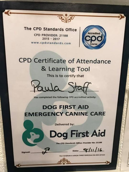 Dog First Aid Ltd are coming to Cocos