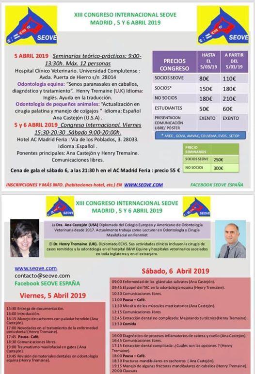XIII Congreso Internacional Seove