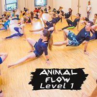 Animal Flow Dublin Certification Workshop