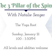 The 3 Pillars of the Spine