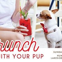 Brunch with Your Pup