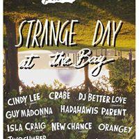 Strange Day at the Bay