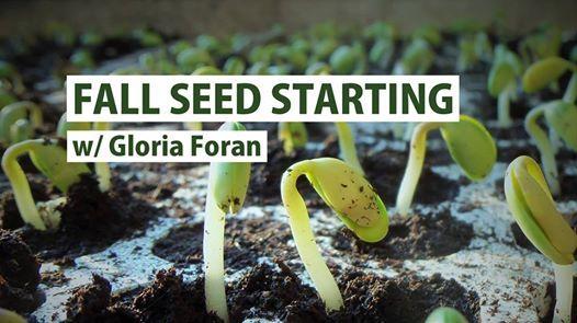 Fall Seed Starting w/ Gloria Foran at Primex Garden Center, Glenside