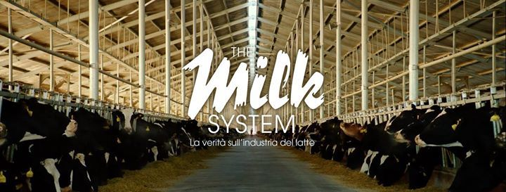 The Milk System a Cremona