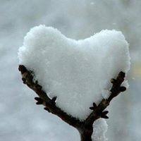 Reiki &amp de Winter