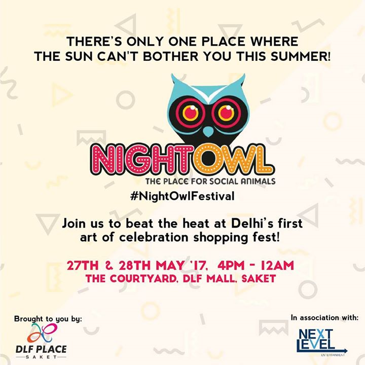 The Night Owl Festival