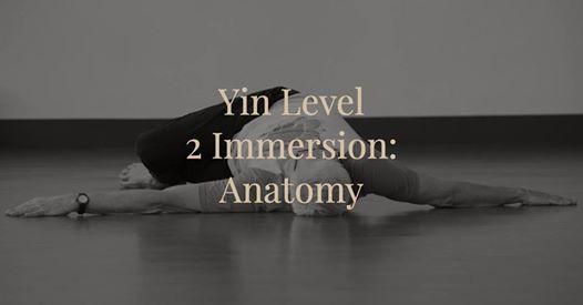 Yin Level 2 Immersion Anatomy