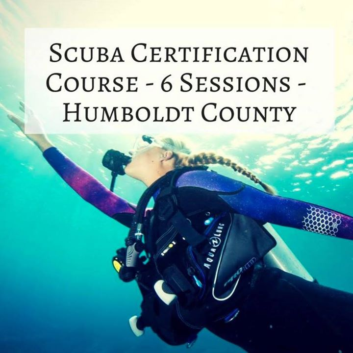 Open Water NAUI Scuba Certification (6 Sessions) at Pacific ...
