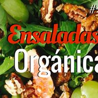 Ensaladas Orgnicas - Inicia 2016 con salud y vitalidad