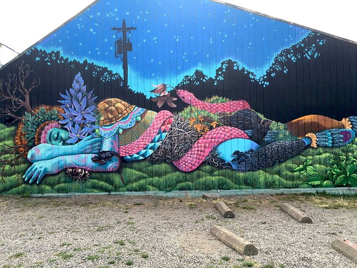 2016 mural bike tour at whiteaker carpark south 5th alley for Art miles mural project