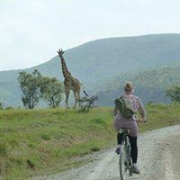 1Day Trip Nairobi to Lake Naivasha Hells Gate Cycling Adventure