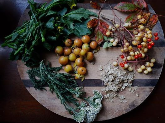 Belfasts Wild Larder - A Faculty Lecture