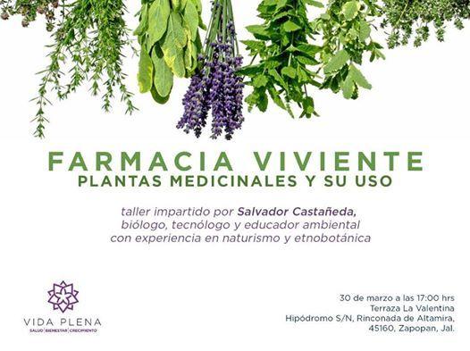 Farmacia Viviente At Calle Hipódromo Agraria 45160 Zapopan