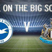Brighton &amp Hove Albion v Newcastle United
