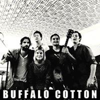 Concert Buffalo Cotton