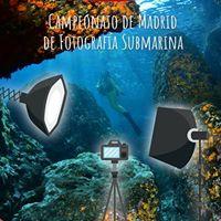 Campeonato Regional de Fotografa Submarina 2017