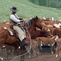 Horsemanship Workshop with Miles Kingdon