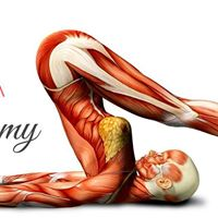 Yoga Anatomy Workshop