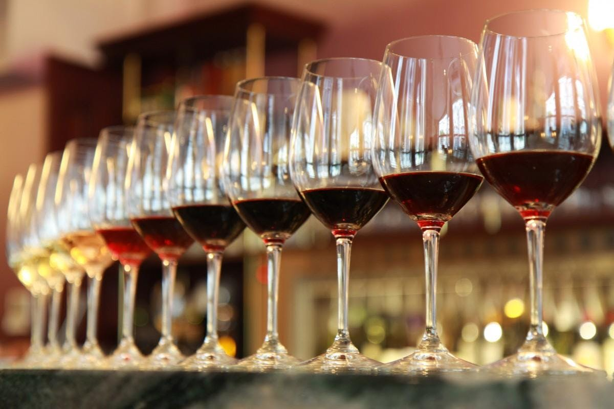 Networking Wine Tasting