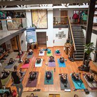 Free Sunday Morning Yoga at Patagonia Santa Monica