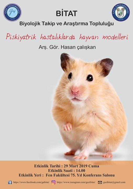 Psikiyatrik hastalklarda hayvan modelleri