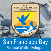 San Francisco Bay NWR Complex